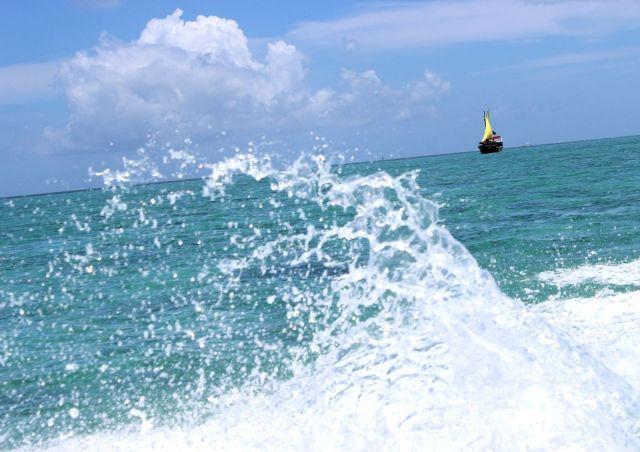 photos/paradis-ile-maurice-voyage.jpg